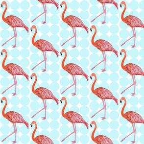 flamingopolkadot