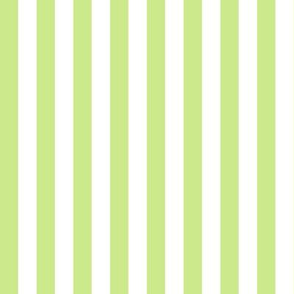 Sprout Stripes 1/2 Inch Vertical
