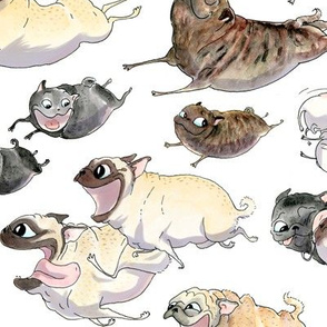 Pugs on the Move - white
