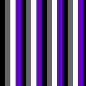 Ace Aware - Asexual Awareness Color Flag Stripes