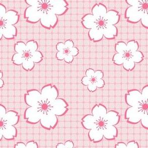 Sakura - white on pink checker