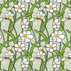White Narcissus on Light Sage