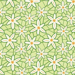 Lilies (Green)