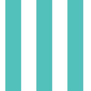 Circus Stripe, Aqua