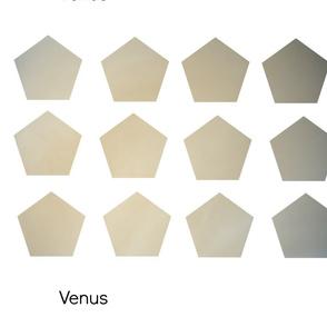 Venus Cut and Sew