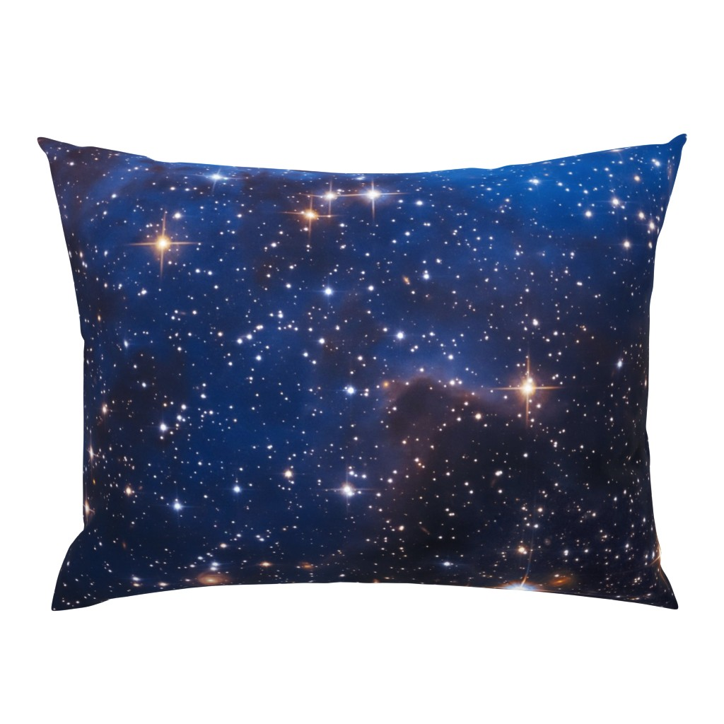 Campine Pillow Sham featuring Cosmos by shino_usagi