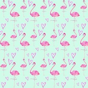 flamingos in mint