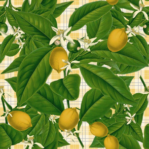 Lemon Botanical ~ Provence Plaid