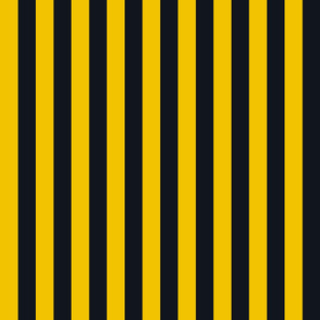 Stripes in Yellow and Black
