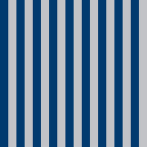 Stripes in Blue and Grey
