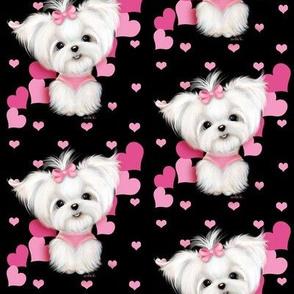 Maltese Black and  hearts M