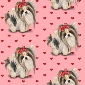 Biewer/Parti/Yorkie Pink and hearts M