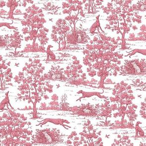 Dark Pink Greyhound Toile ©2010 by Jane Walker