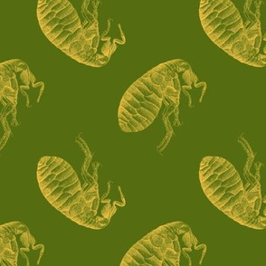 March of the Fleas, Too