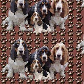 basset_hounds_group