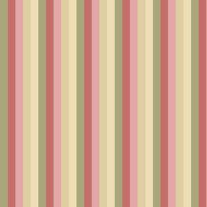 Faded Rose Palette Stripes