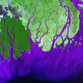 ganges Satellite Image river purple Green