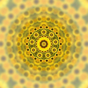 Abstract Sunflower Fractal Pattern