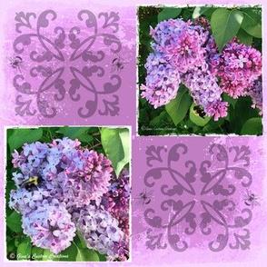 Purple Lilacs & BumbleBees