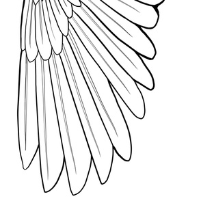 Really Giant Simple Feather Wings