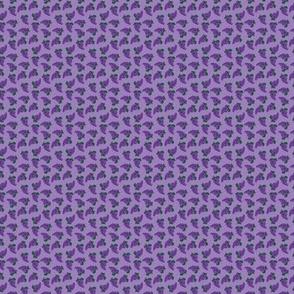 Grapes and Dots