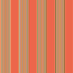 Broad Orange Stripe