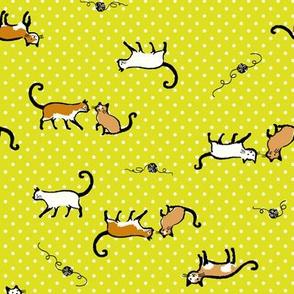 kitties with yarn
