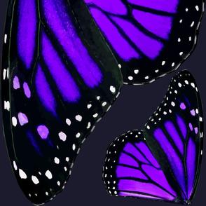 Giant Purple Monarch Butterfly Wings