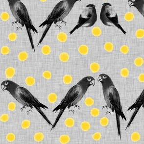 Birds and dots 02 (b&w and yellow)