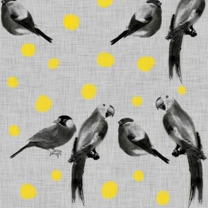 Birds and dots (b&w and yellow)