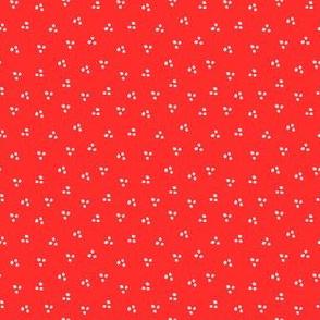 Blomma spots Red