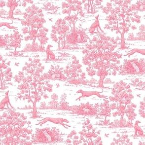 Light Pink Greyhound Toile ©2010 by Jane Walker