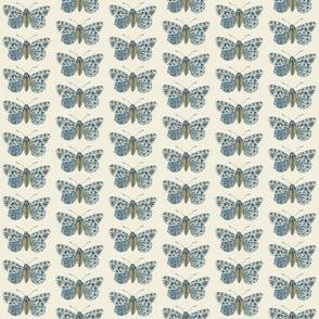 Tiny Tiger Moth Pearlwood