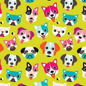 Colorful cute puppy and dogs