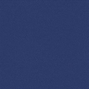 Fishing Lure Blue