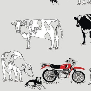 Dairy farm Pace of Life