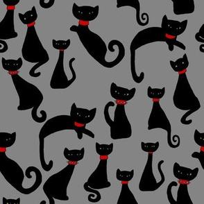 Black Cats with Attitude