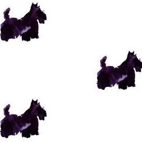 scottie_purple_cestlaviv
