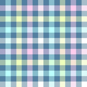 blue rainbow gingham, 1/2""