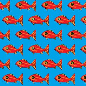 big_red_fish
