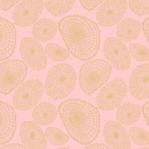 Limpet Waltz - Pink & Gold
