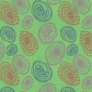 Limpet Waltz - Green