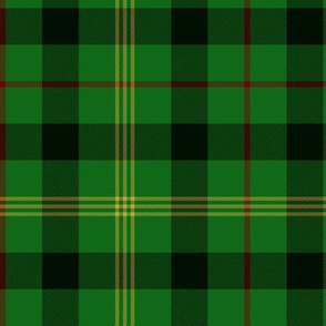 "Paton family tartan, 6"" modern colors"