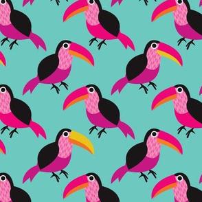 Tucan exotic brazil illustration bird