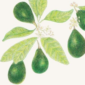 Avocado blooms - emerald green / chartreuse