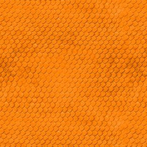 Orange sand scales
