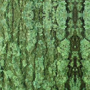 Lexington Camouflage