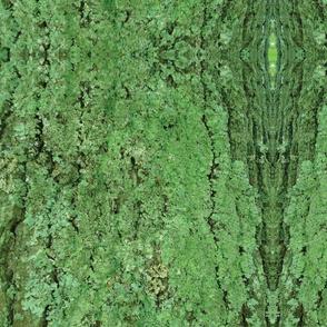 Kentucky Camouflage
