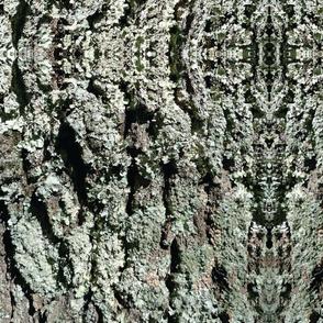 Bluegrass Camouflage