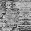 3271820-stone-wall-camouflage-by-royal_camouflage